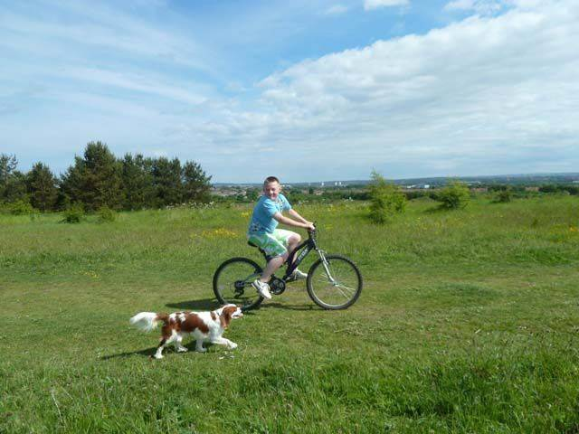 Riding bike with dog