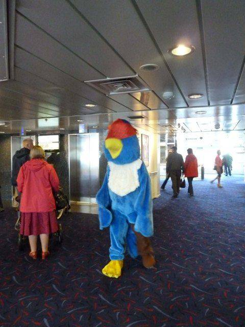 On board DFDS seaways, Jack the parrot