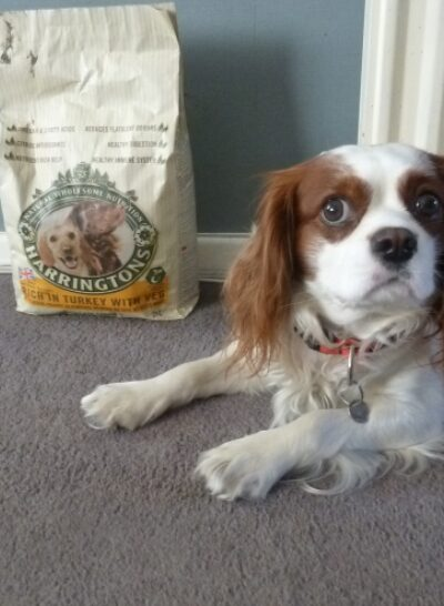 Harringtons pet food