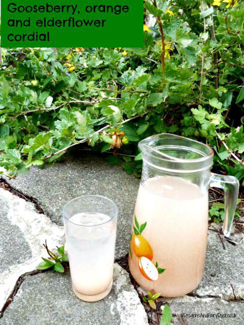 Gooseberry, orange and elderflower cordial