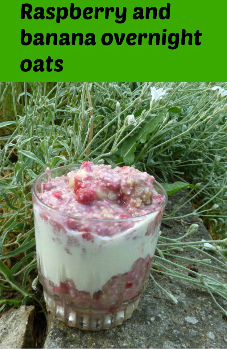 Raspberry and banana overnight oats in the garden
