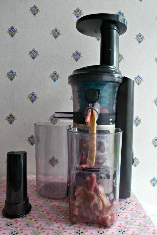 Making a frozen dessert with the panasonic slow juicer