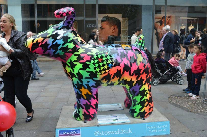 Houndstooth snowdog on the Great North snowdogs trail