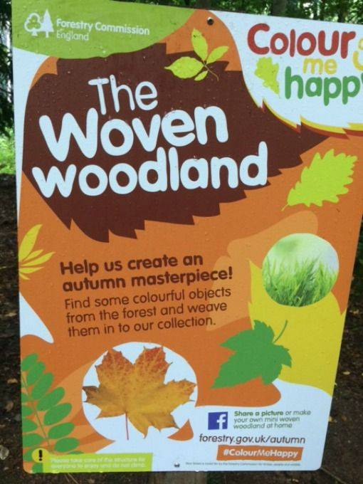 Woven woodland