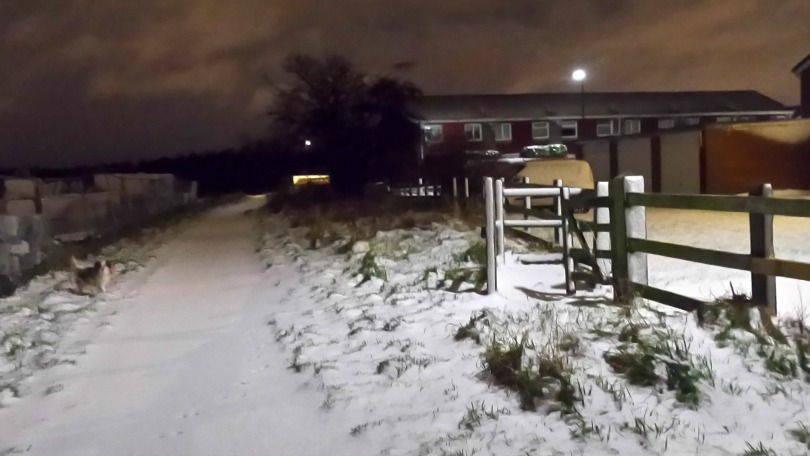 Snowy path in the dark morning