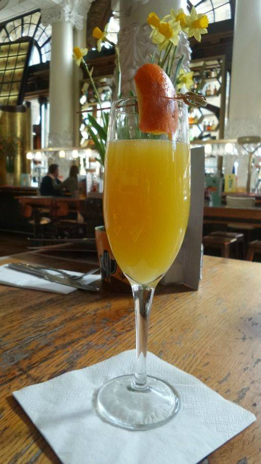Mimosa at Revolution Newcastle
