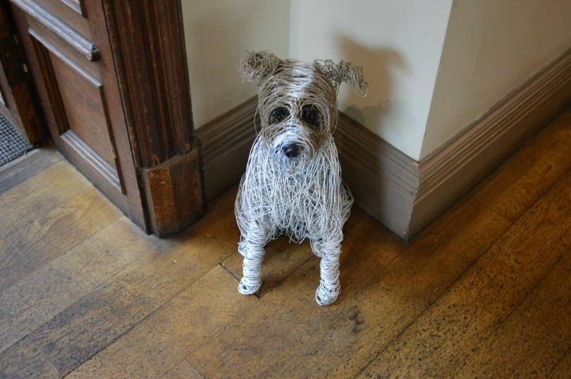 Jesmond Dene House Dog