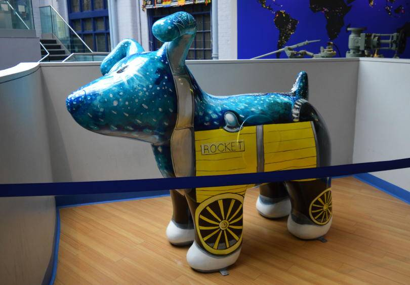 Rocket Great North Snow dog at the discovery museum