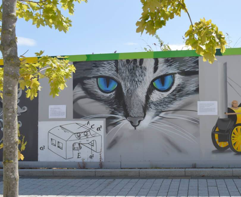 Cat - Fifity Northern Icons