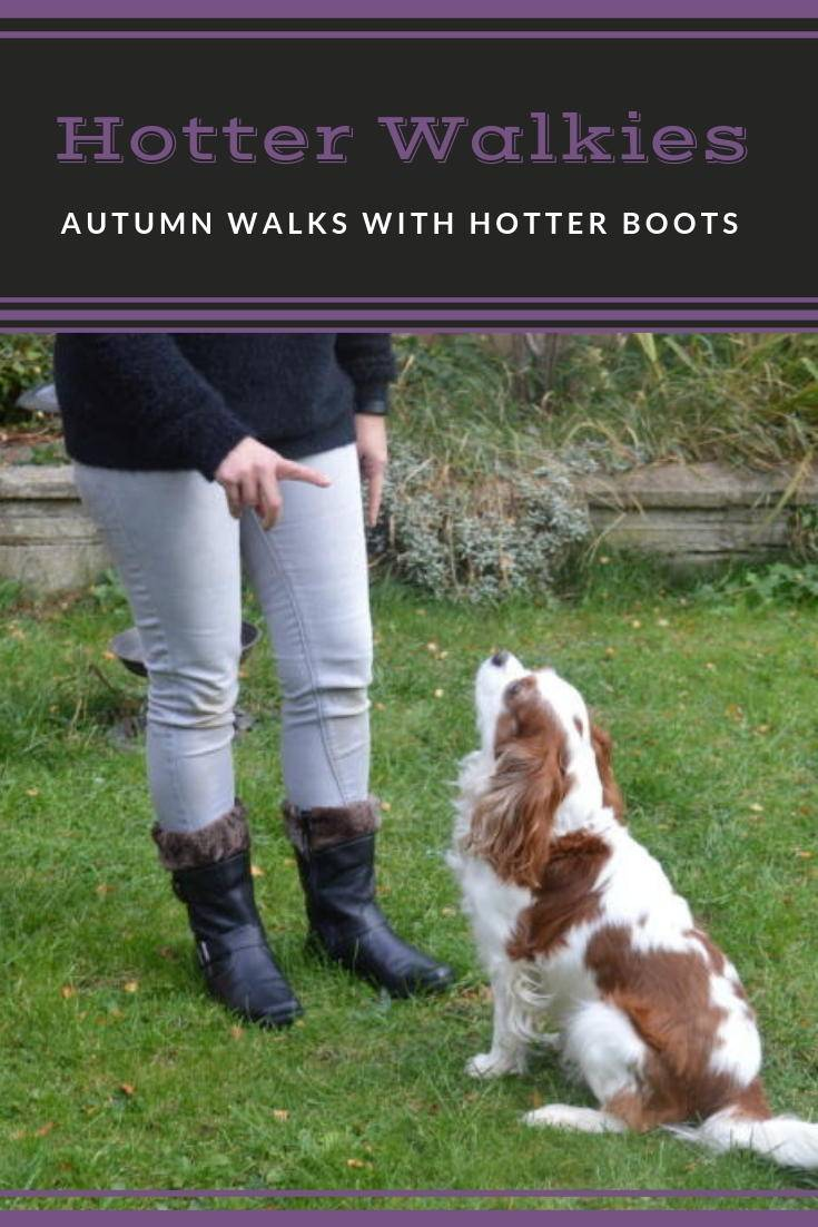 Autumn dog walks with hotter boots