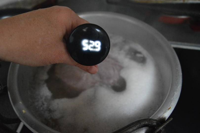 Professional secrets kitchen thermometer in ham testing temperature