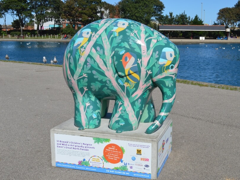 Elmer in front of water painted with a green background and decorated with birds