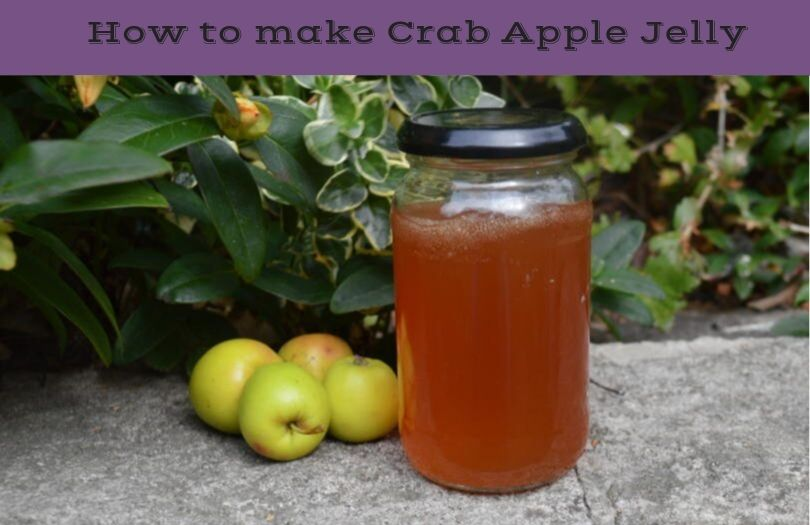 how to make crab apple jelly