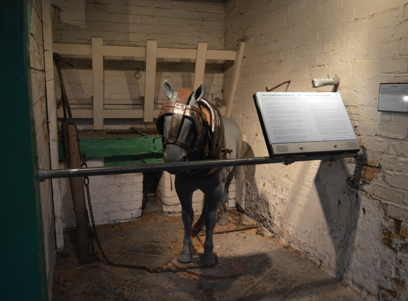 Pit pony at woodhorn