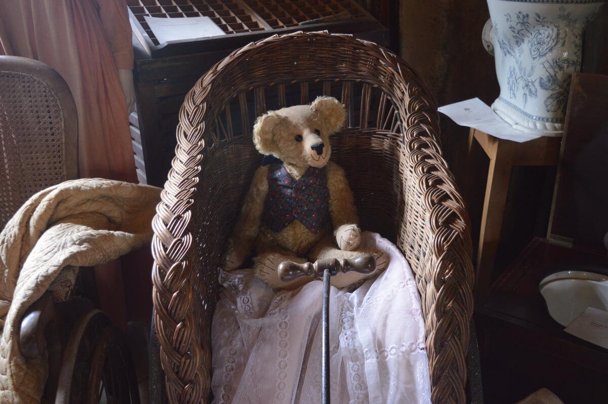 A teddy bear in a bath chair